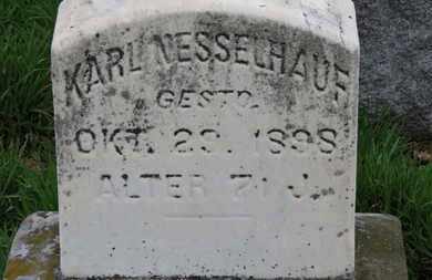 NESSELHAUF, KARL - Erie County, Ohio | KARL NESSELHAUF - Ohio Gravestone Photos