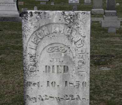 NORTON, ???? LEONARD - Erie County, Ohio | ???? LEONARD NORTON - Ohio Gravestone Photos