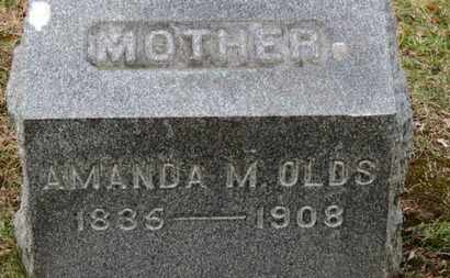 OLDS, AMANDA A. - Erie County, Ohio | AMANDA A. OLDS - Ohio Gravestone Photos