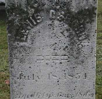 OSBORN, LEWIS - Erie County, Ohio | LEWIS OSBORN - Ohio Gravestone Photos
