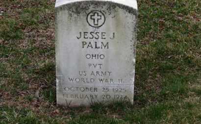 PALM, JESSE J. - Erie County, Ohio | JESSE J. PALM - Ohio Gravestone Photos