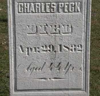 PECK, CHARLES - Erie County, Ohio | CHARLES PECK - Ohio Gravestone Photos