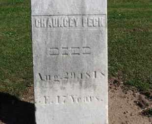 PECK, CHAUNCEY - Erie County, Ohio | CHAUNCEY PECK - Ohio Gravestone Photos