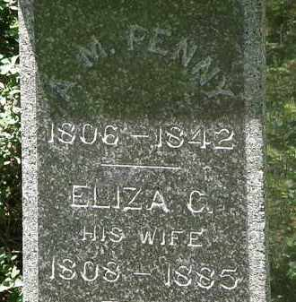 PENNY, ELIZA C. - Erie County, Ohio | ELIZA C. PENNY - Ohio Gravestone Photos
