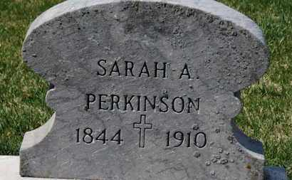PERKINSON, SARAH A. - Erie County, Ohio | SARAH A. PERKINSON - Ohio Gravestone Photos