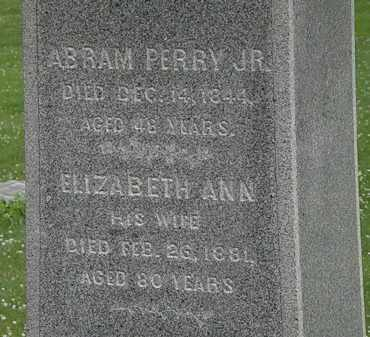 PERRY, ELIZABETH ANN - Erie County, Ohio | ELIZABETH ANN PERRY - Ohio Gravestone Photos