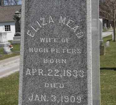 PETERS, ELIZA - Erie County, Ohio | ELIZA PETERS - Ohio Gravestone Photos