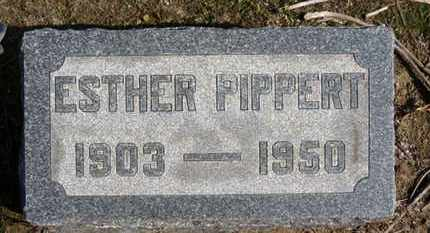 PIPPERT, ESTHER - Erie County, Ohio | ESTHER PIPPERT - Ohio Gravestone Photos
