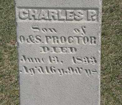 PROCTOR, O. - Erie County, Ohio | O. PROCTOR - Ohio Gravestone Photos