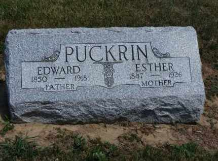 PUCKRIN, EDWARD - Erie County, Ohio | EDWARD PUCKRIN - Ohio Gravestone Photos