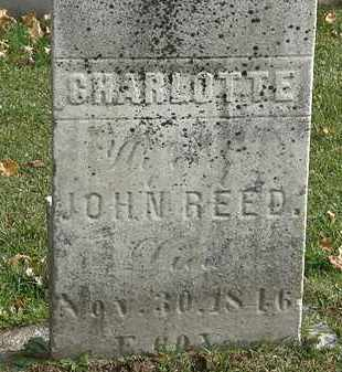 REED, CHARLOTTE - Erie County, Ohio | CHARLOTTE REED - Ohio Gravestone Photos