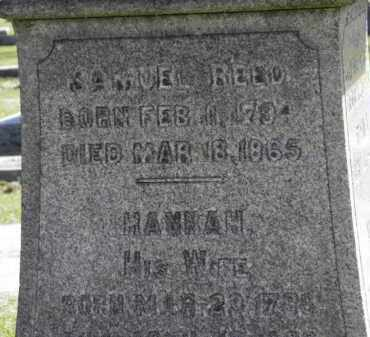 REED, HANNAH - Erie County, Ohio | HANNAH REED - Ohio Gravestone Photos