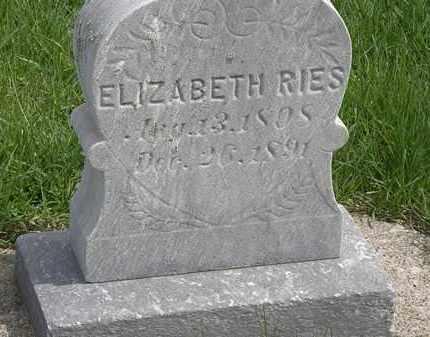 REIS, ELIZABETH - Erie County, Ohio | ELIZABETH REIS - Ohio Gravestone Photos