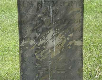 RICHARDS, RACHEL - Erie County, Ohio   RACHEL RICHARDS - Ohio Gravestone Photos