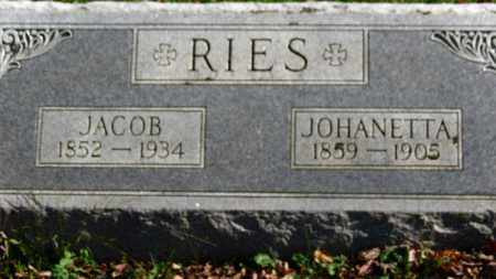 RIES, JACOB - Erie County, Ohio | JACOB RIES - Ohio Gravestone Photos