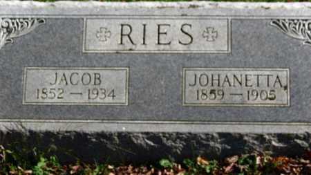 RIES, JOHANETTA - Erie County, Ohio | JOHANETTA RIES - Ohio Gravestone Photos