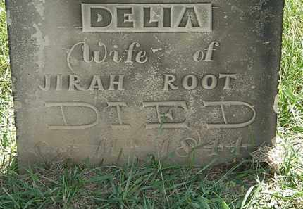 ROOT, DELIA - Erie County, Ohio | DELIA ROOT - Ohio Gravestone Photos