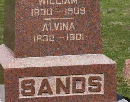 SANDS, ALVINA - Erie County, Ohio | ALVINA SANDS - Ohio Gravestone Photos