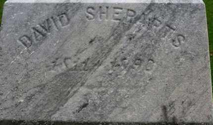 SHEPARTS, DAVID - Erie County, Ohio | DAVID SHEPARTS - Ohio Gravestone Photos