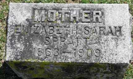 SPRATT, ELIZABETH SARAH - Erie County, Ohio | ELIZABETH SARAH SPRATT - Ohio Gravestone Photos