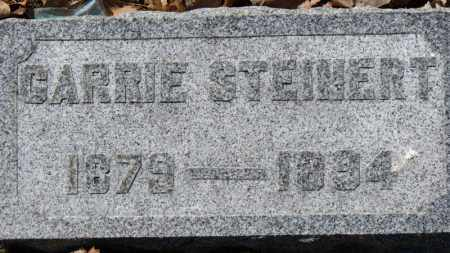STEINERT, CARRIE - Erie County, Ohio | CARRIE STEINERT - Ohio Gravestone Photos