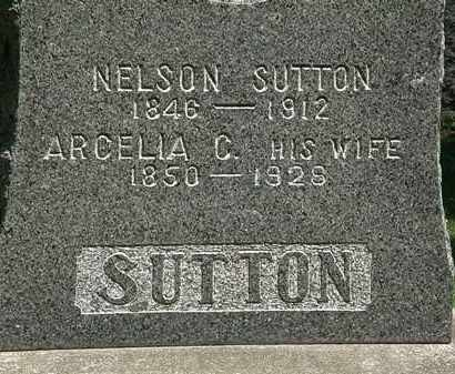 SUTTON, NELSON - Erie County, Ohio | NELSON SUTTON - Ohio Gravestone Photos