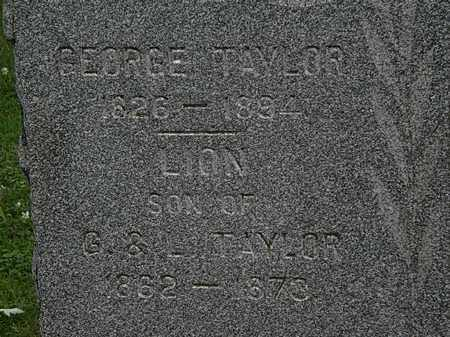 TAYLOR, GEORGE - Erie County, Ohio | GEORGE TAYLOR - Ohio Gravestone Photos