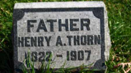 THORN, HENRY A. - Erie County, Ohio | HENRY A. THORN - Ohio Gravestone Photos