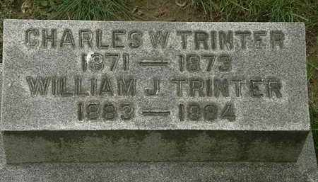 TRINTER, CHARLES W. - Erie County, Ohio | CHARLES W. TRINTER - Ohio Gravestone Photos