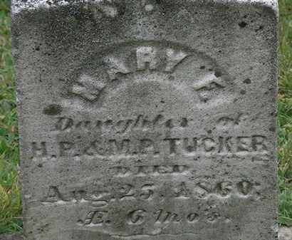 TUCKER, MARY F. - Erie County, Ohio | MARY F. TUCKER - Ohio Gravestone Photos