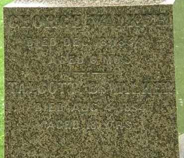 WALKER, TALCOTT B. - Erie County, Ohio | TALCOTT B. WALKER - Ohio Gravestone Photos