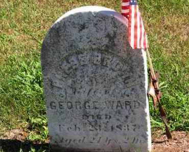 WARD, PHEBE - Erie County, Ohio | PHEBE WARD - Ohio Gravestone Photos