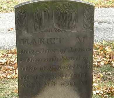 WARNER, HARIET M. - Erie County, Ohio | HARIET M. WARNER - Ohio Gravestone Photos