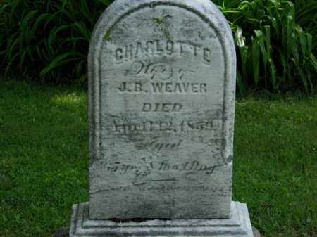 WEAVER, J. B, - Erie County, Ohio | J. B, WEAVER - Ohio Gravestone Photos
