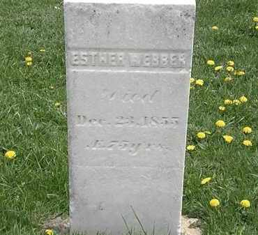 WEBBER, ESTHER - Erie County, Ohio | ESTHER WEBBER - Ohio Gravestone Photos