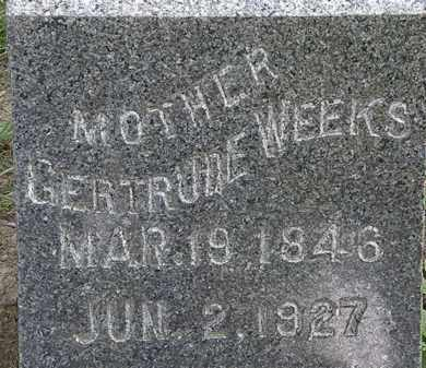 WEEKS, GERTRUDE - Erie County, Ohio | GERTRUDE WEEKS - Ohio Gravestone Photos