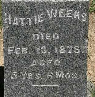 WEEKS, HATTIE - Erie County, Ohio | HATTIE WEEKS - Ohio Gravestone Photos