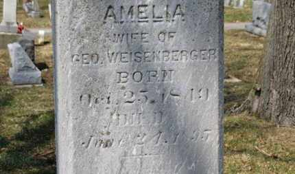 WEISENBERGER, AMELIA - Erie County, Ohio | AMELIA WEISENBERGER - Ohio Gravestone Photos