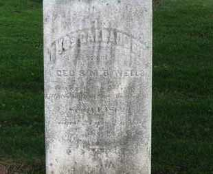 WELLS, HOS, GALLAUDET - Erie County, Ohio | HOS, GALLAUDET WELLS - Ohio Gravestone Photos