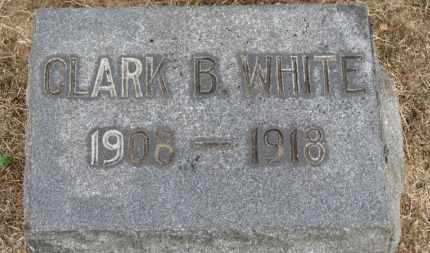 WHITE, CLARK B. - Erie County, Ohio | CLARK B. WHITE - Ohio Gravestone Photos