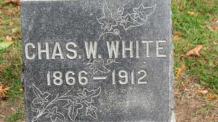 WHITE, CHAS. W. - Erie County, Ohio | CHAS. W. WHITE - Ohio Gravestone Photos