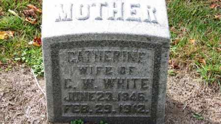 WHITE, CATHERINE - Erie County, Ohio | CATHERINE WHITE - Ohio Gravestone Photos