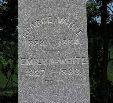 WHITE, EMILY A. - Erie County, Ohio | EMILY A. WHITE - Ohio Gravestone Photos