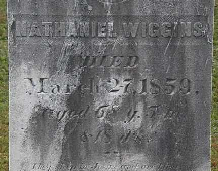 WIGGINS, NATHANIEL - Erie County, Ohio | NATHANIEL WIGGINS - Ohio Gravestone Photos