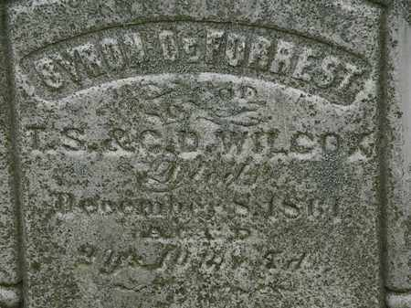 WILCOX, G.D. - Erie County, Ohio | G.D. WILCOX - Ohio Gravestone Photos