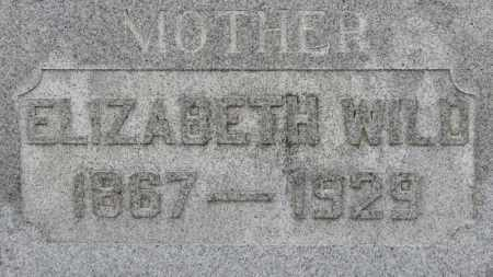 WILD, ELIZABETH - Erie County, Ohio | ELIZABETH WILD - Ohio Gravestone Photos
