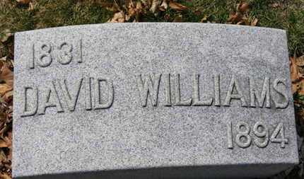 WILLIAMS, DAVID - Erie County, Ohio | DAVID WILLIAMS - Ohio Gravestone Photos