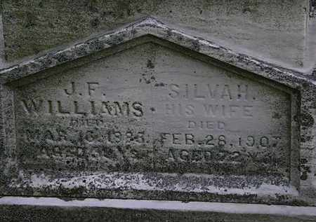 WILLIAMS, SILVA H. - Erie County, Ohio | SILVA H. WILLIAMS - Ohio Gravestone Photos
