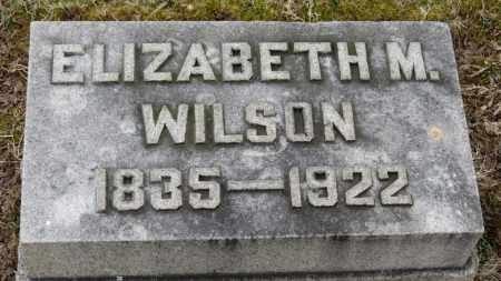 WILSON, ELIZABETH M. - Erie County, Ohio | ELIZABETH M. WILSON - Ohio Gravestone Photos