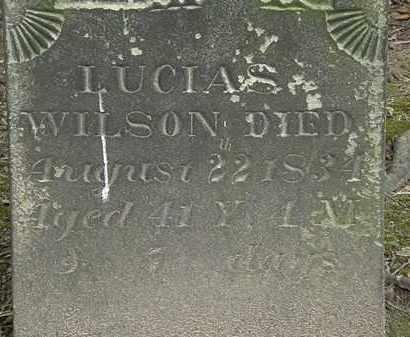 WILSON, LUCIAS - Erie County, Ohio | LUCIAS WILSON - Ohio Gravestone Photos